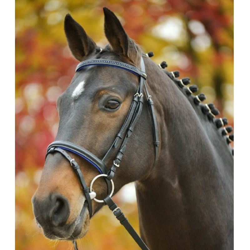 Waldhausen testiera per cavallo e pony in cuoio e strass modello Star Diamond