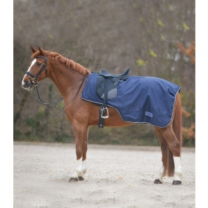 Waldhausen kidneys cover for horses and pony blue color