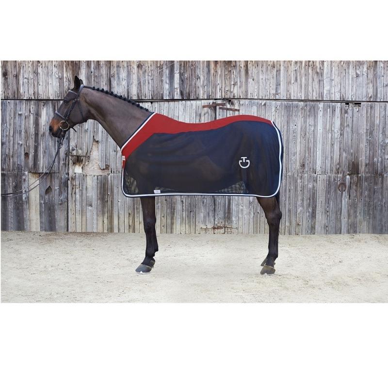 Cavalleria Toscana coperta a reta da cavallo