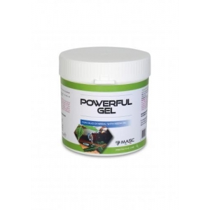 Masc Powerful gel 250ml