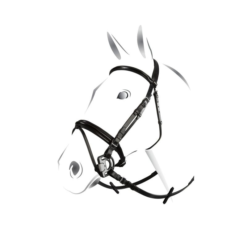 Equestro testiera inglese in cuoio italiano