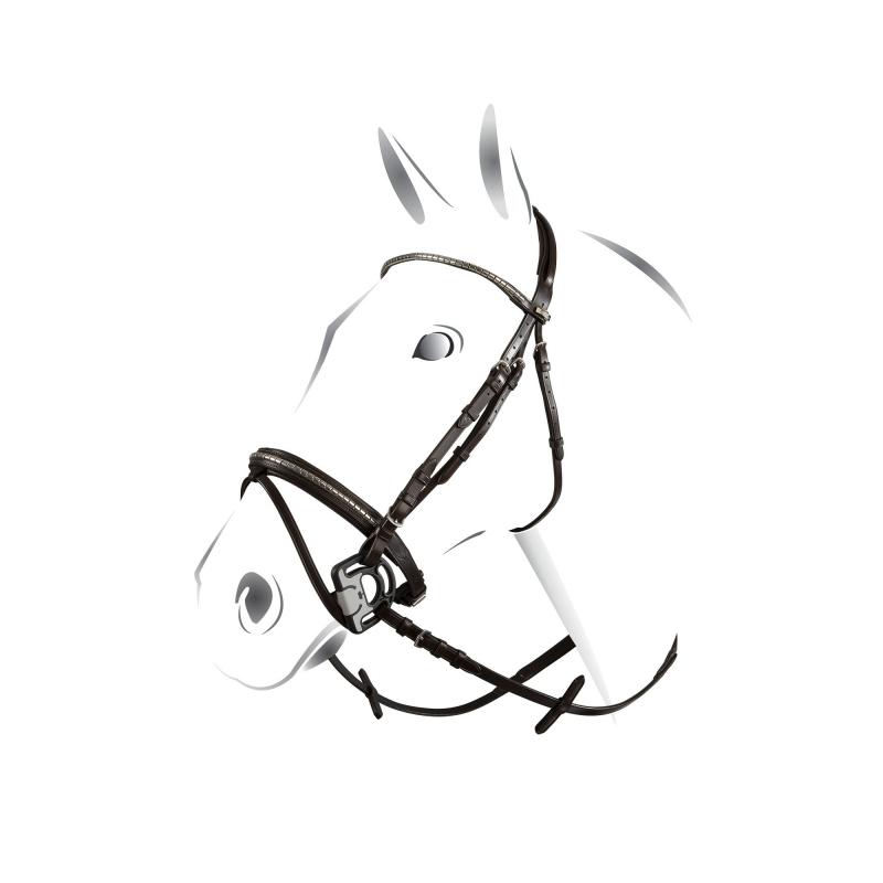 Equestro Testiera inglese sagomata con clincher