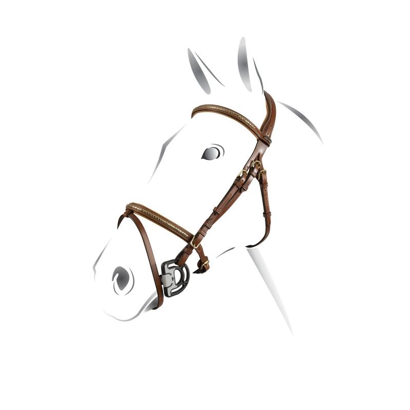 Equestro Testiera inglese con clincher in ottone