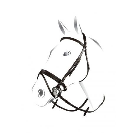 Equestro testiera in cuoio con chiudibocca senza redini