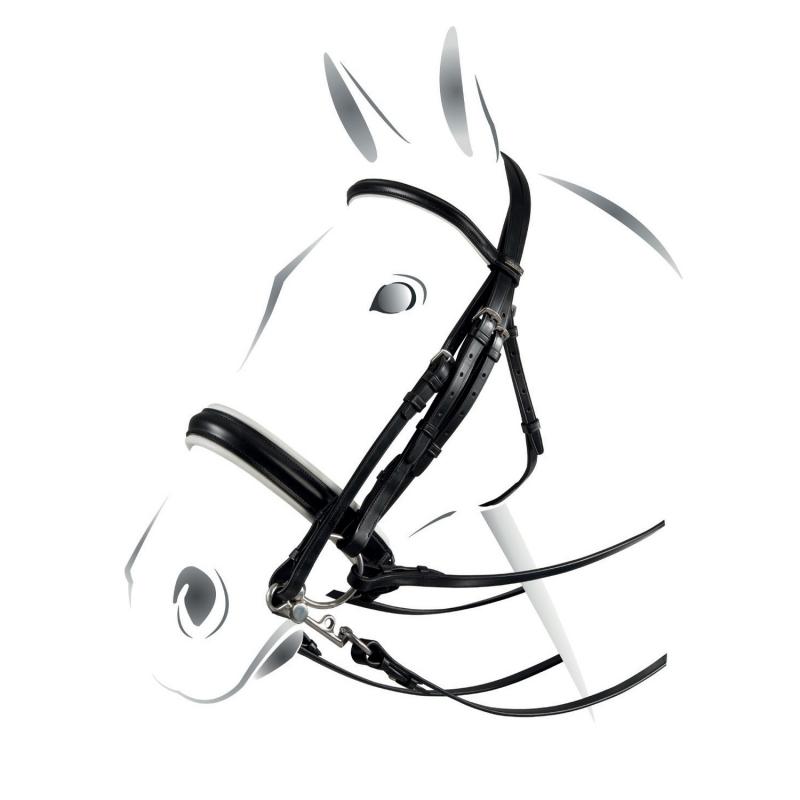 Testiera modello dressage plus Equestro