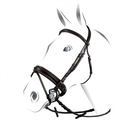 Equestro Testiera modello Sparkling