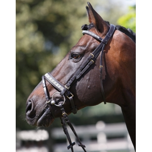 Tattini Bridle made with leather with stripe of glitter